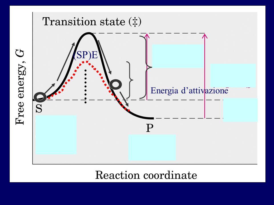(SP)E Energia d'attivazione