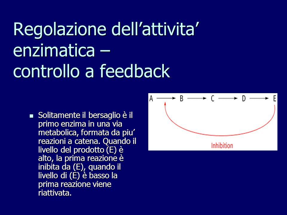 Regolazione dell'attivita' enzimatica – controllo a feedback Solitamente il bersaglio è il primo enzima in una via metabolica, formata da piu' reazion