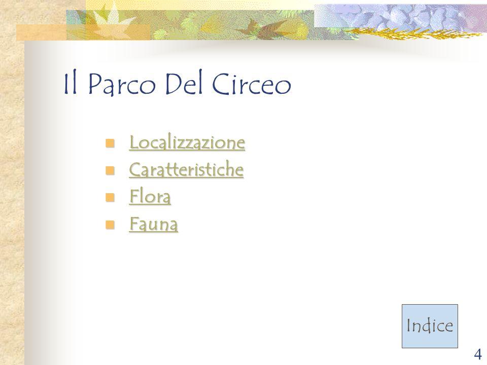 4 Il Parco Del Circeo Localizzazione Localizzazione Localizzazione Caratteristiche Caratteristiche Caratteristiche Flora Flora Flora Fauna Fauna Fauna