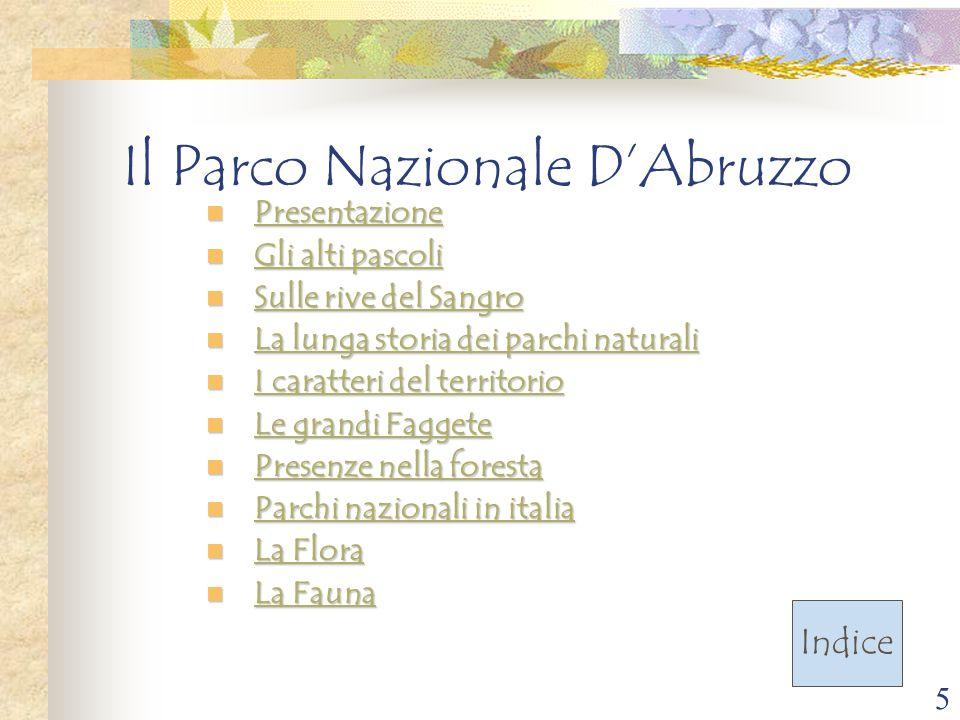5 Il Parco Nazionale D'Abruzzo Presentazione Presentazione Presentazione Gli alti pascoli Gli alti pascoli Gli alti pascoli Gli alti pascoli Sulle riv