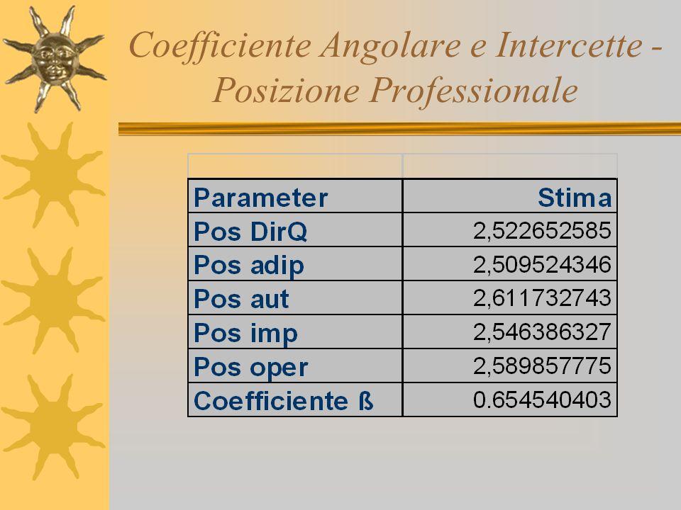 Coefficiente Angolare e Intercette - Posizione Professionale