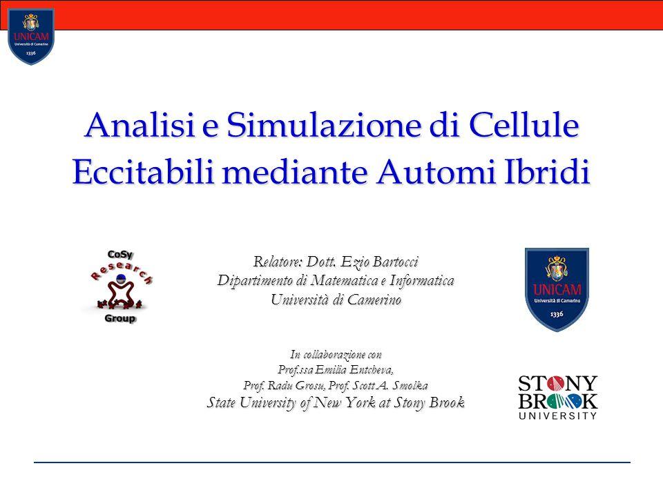 Analisi e Simulazione di Cellule Eccitabili mediante Automi Ibridi Relatore: Dott. Ezio Bartocci Dipartimento di Matematica e Informatica Università d