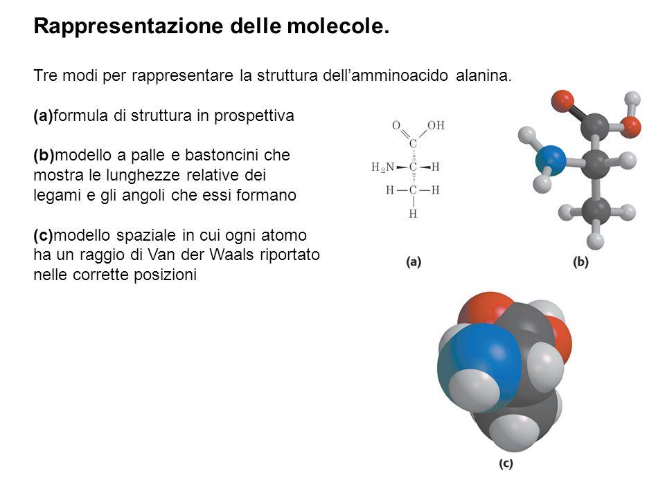Rappresentazione delle molecole. Tre modi per rappresentare la struttura dell'amminoacido alanina. (a)formula di struttura in prospettiva (b)modello a