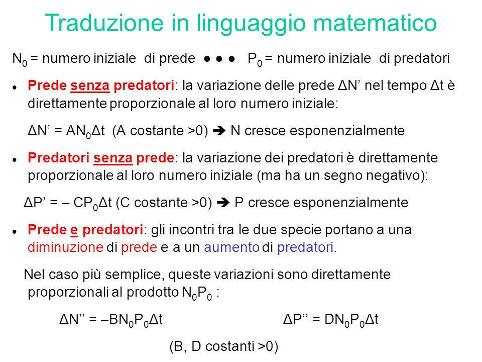 prede con cibo illimitato, assenza di predatori  crescita esponenziale: ΔN' = AN 0 Δt (con A>0) cibo limitato  la disponibilità di cibo per ciascun individuo è influenzata (negativamente) dalla popolazione totale 1- Prede con cibo limitato, senza predatori l equazione iniziale va modificata: ΔN' = (A  λN 0 ) N 0 Δt ( A, λ costanti >0) 1.A–λN 0 =0  N=N 0 =cost.