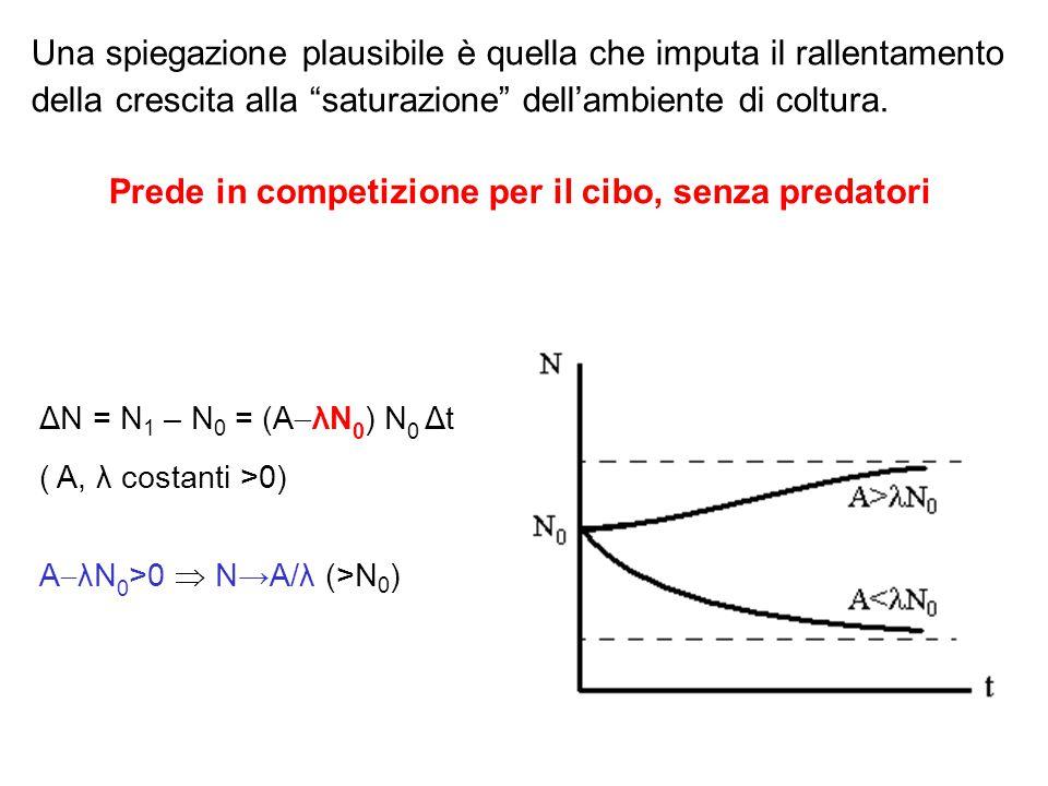 facciamo un esercizio sul foglio elettronico: partendo da : ΔN = N 1 – N 0 = (A  λN 0 ) N 0 Δt ( A, λ costanti >0) scriviamo: 1) N 1 = N 0 +(A  λN 0 ) N 0 Δt 2) N 2 = N 1 +(A  λN 1 ) N 1 Δt 3) N 3 = N 2 +(A  λN 2 ) N 2 Δt..............................