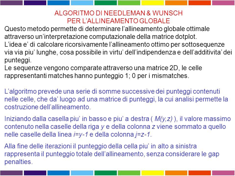 ALGORITMO DI NEEDLEMAN & WUNSCH PER L'ALLINEAMENTO GLOBALE Questo metodo permette di determinare l'allineamento globale ottimale attraverso un'interpretazione computazionale della matrice dotplot.