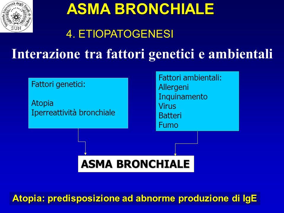 Interazione tra fattori genetici e ambientali Fattori genetici: Atopia Iperreattività bronchiale Fattori ambientali: Allergeni Inquinamento Virus Batt