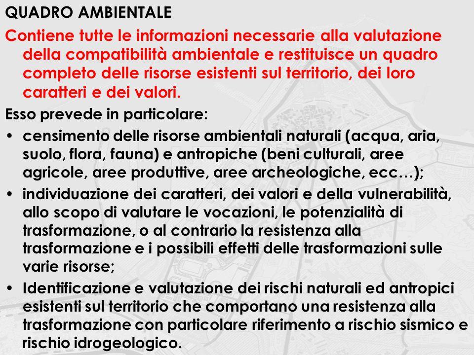 QUADRO AMBIENTALE Contiene tutte le informazioni necessarie alla valutazione della compatibilità ambientale e restituisce un quadro completo delle ris
