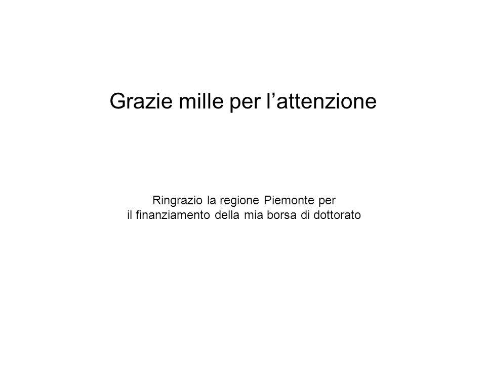 Grazie mille per l'attenzione Ringrazio la regione Piemonte per il finanziamento della mia borsa di dottorato