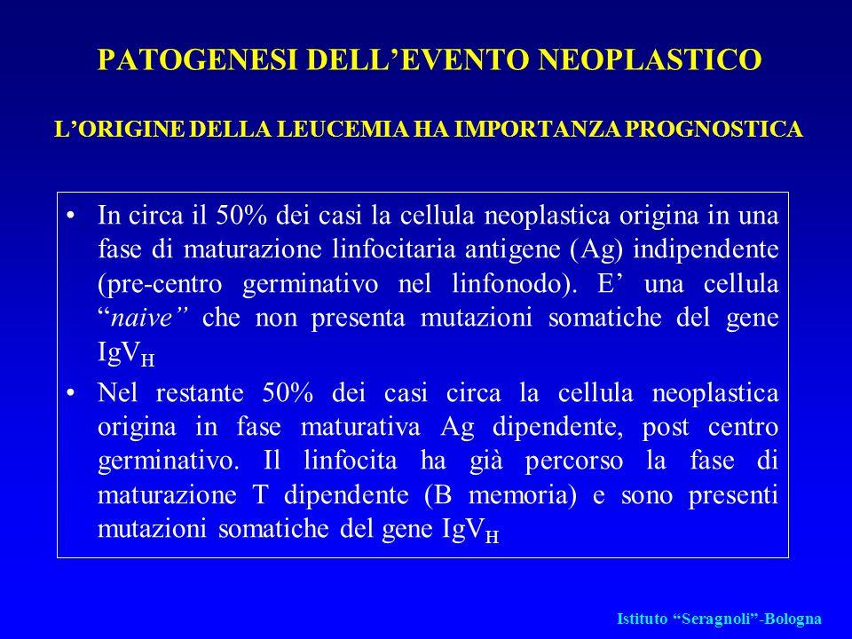 EPIDEMIOLOGIA 25% di tutte le leucemie in Europa La più frequente leucemia cronica Rara e a fenotipo prevalentemente T in oriente L'incidenza aumenta con l' età (età media 63 anni) Nessuna correlazione etiologica con i principali fattori leucemogeni (ad esempio radiazioni ionizzanti) Istituto Seragnoli -Bologna