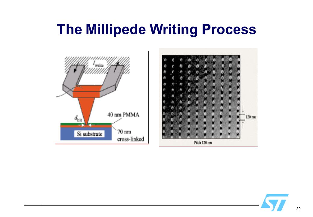 30 The Millipede Writing Process