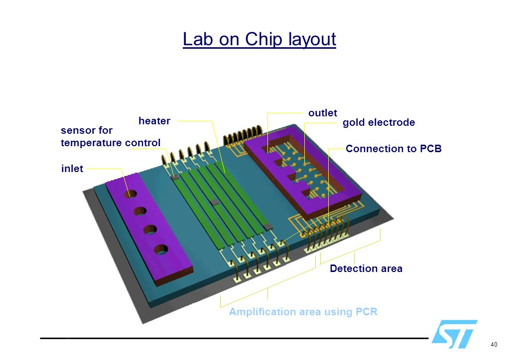 40 Amplification area using PCR Detection area inlet sensor for temperature control heater outlet gold electrode Connection to PCB Lab on Chip layout
