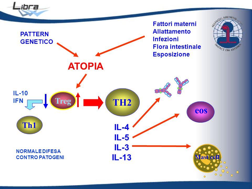 APC ALLERGENE Th1 Th2 Eos IL-5 B IL-4 Y Y Y Y Y IgE MAST IL-13 ECP EDX MBP CD4 FASE IMMEDIATA Istamina, PG, PAF LTs MOLECOLE DI ADESIONE ALLERGENE iNOS TNFa NK Neu RECLUTAMENTO CELLULARE Y FASE TARDIVA INFIAMMAZIONE Treg