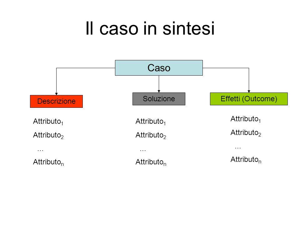 Il caso in sintesi Caso Descrizione Attributo 1 Attributo 2...