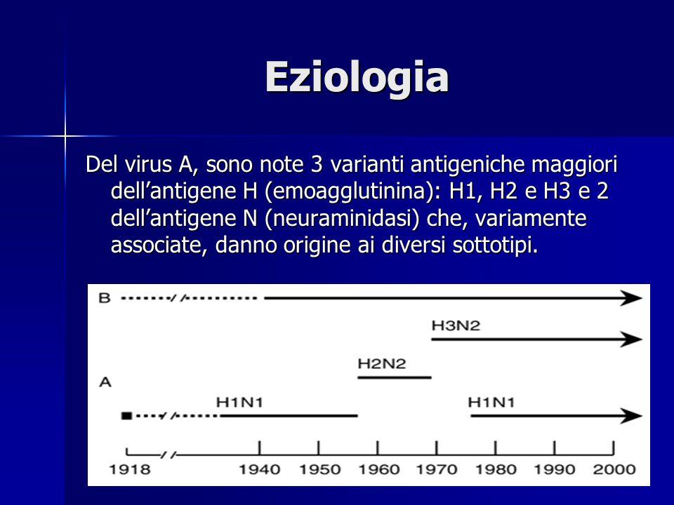 Eziologia Del virus A, sono note 3 varianti antigeniche maggiori dell'antigene H (emoagglutinina): H1, H2 e H3 e 2 dell'antigene N (neuraminidasi) che