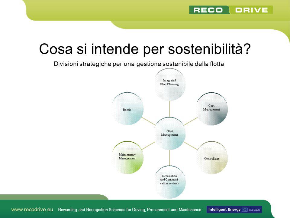 Rewarding and Recognition Schemes for Driving, Procurement and Maintenance Cosa si intende per sostenibilità.