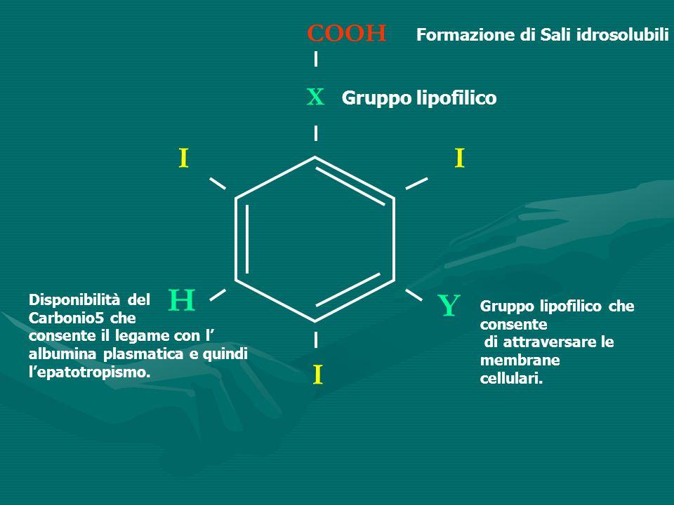 II I X COOH Y H Formazione di Sali idrosolubili Gruppo lipofilico Gruppo lipofilico che consente di attraversare le membrane cellulari. Disponibilità
