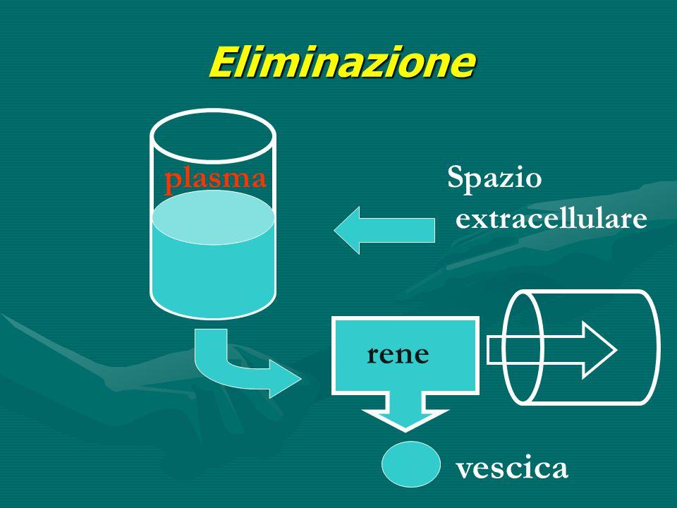 Eliminazione plasmaSpazio extracellulare rene vescica
