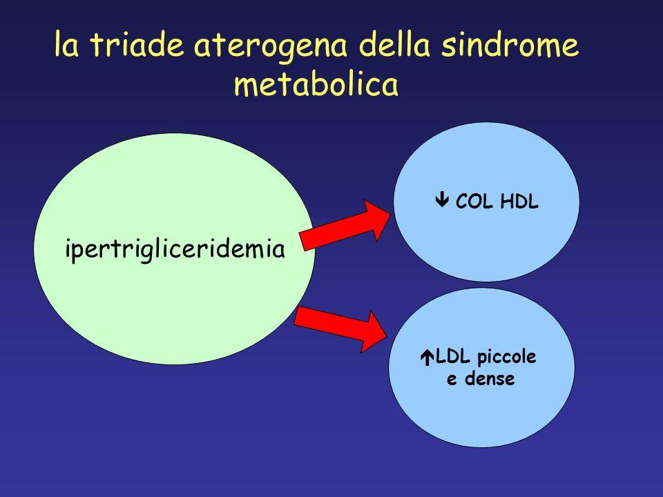 la triade aterogena della sindrome metabolica ipertrigliceridemia  COL HDL  LDL piccole e dense