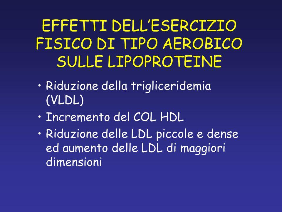 EFFETTI DELL'ESERCIZIO FISICO DI TIPO AEROBICO SULLE LIPOPROTEINE Riduzione della trigliceridemia (VLDL) Incremento del COL HDL Riduzione delle LDL piccole e dense ed aumento delle LDL di maggiori dimensioni