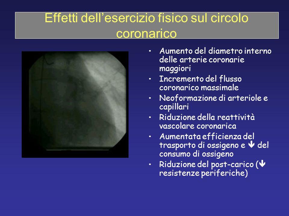 Effetti dell'esercizio fisico sul circolo coronarico Aumento del diametro interno delle arterie coronarie maggiori Incremento del flusso coronarico ma