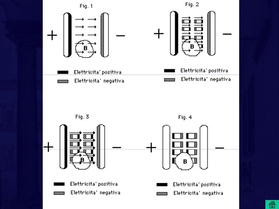 Le cariche sulle piastre determinano le forze, indicate dalle frecce, che comunque non modificano il mezzo interposto; non importa se lo spazio tra le piastre è pieno o vuoto. Ad esempio, se svuotiamo la parte B di spazio, in essa la forza permane inalterata.