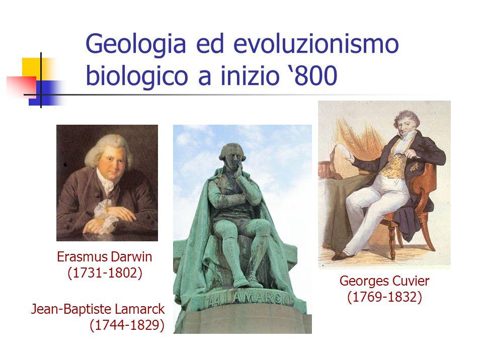 Geologia ed evoluzionismo biologico a inizio '800 Georges Cuvier (1769-1832) Erasmus Darwin (1731-1802) Jean-Baptiste Lamarck (1744-1829)