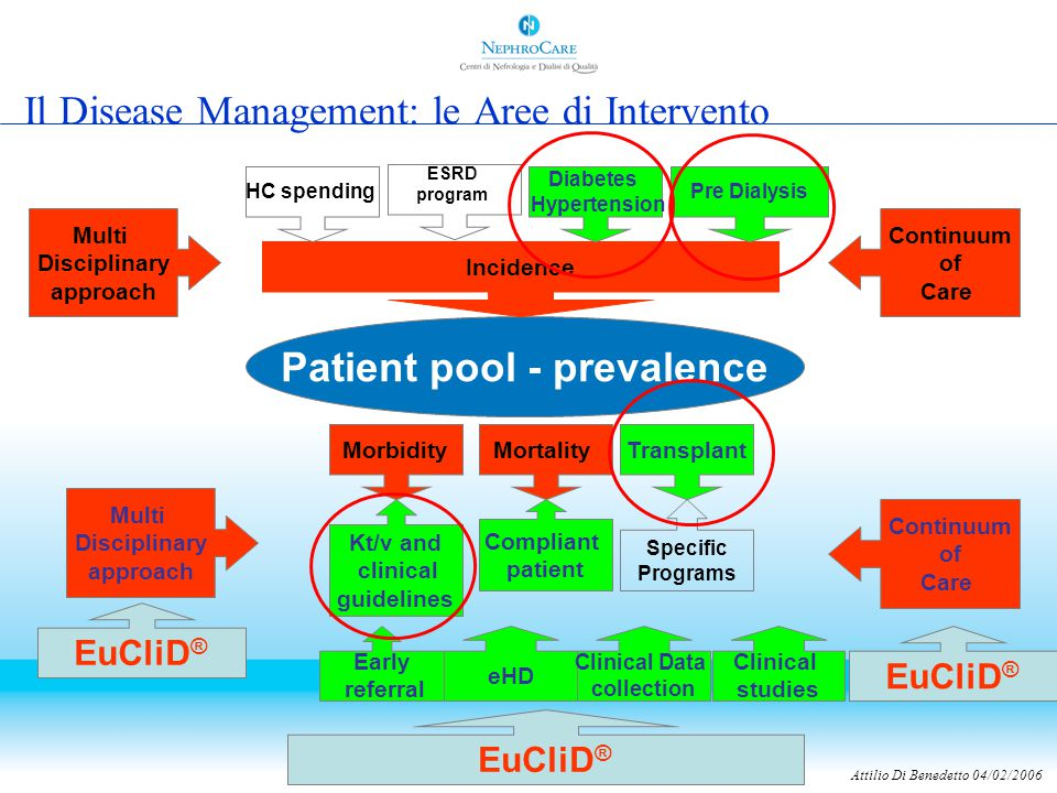 Attilio Di Benedetto 04/02/2006 Il Disease Management: le Aree di Intervento Patient pool - prevalence Morbidity Mortality Transplant Incidence HC spe