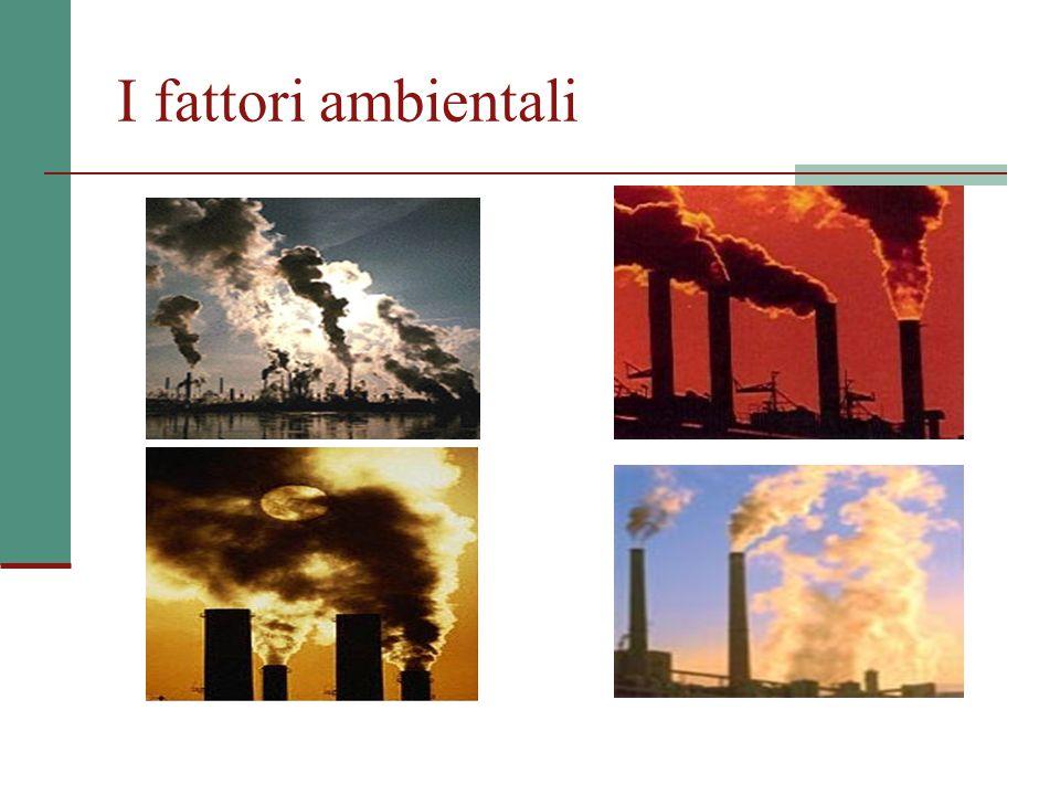 I fattori ambientali