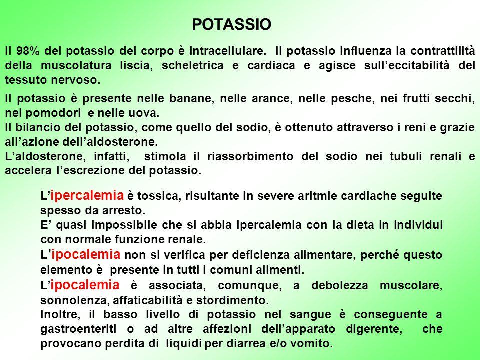 POTASSIO Il 98% del potassio del corpo è intracellulare. Il potassio influenza la contrattilità della muscolatura liscia, scheletrica e cardiaca e agi