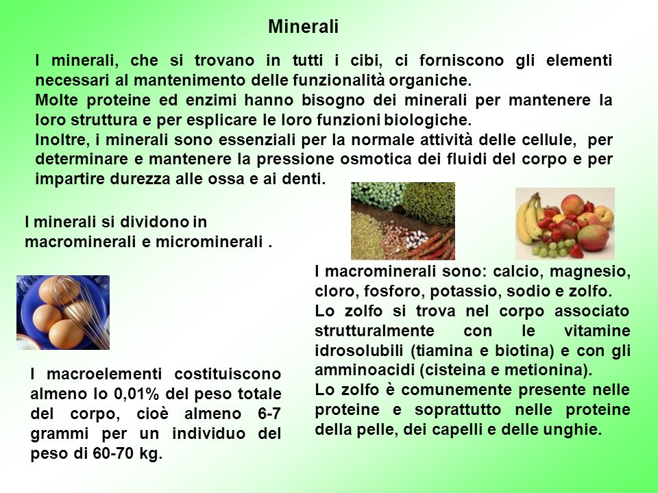 I minerali, che si trovano in tutti i cibi, ci forniscono gli elementi necessari al mantenimento delle funzionalità organiche. Molte proteine ed enzim