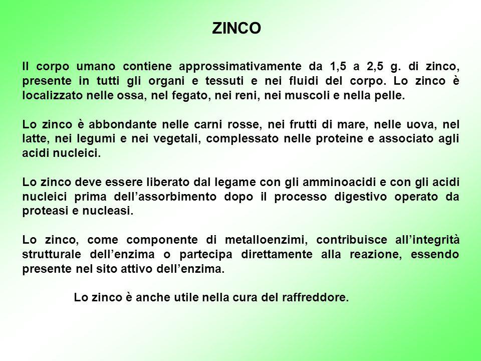 Il corpo umano contiene approssimativamente da 1,5 a 2,5 g. di zinco, presente in tutti gli organi e tessuti e nei fluidi del corpo. Lo zinco è locali