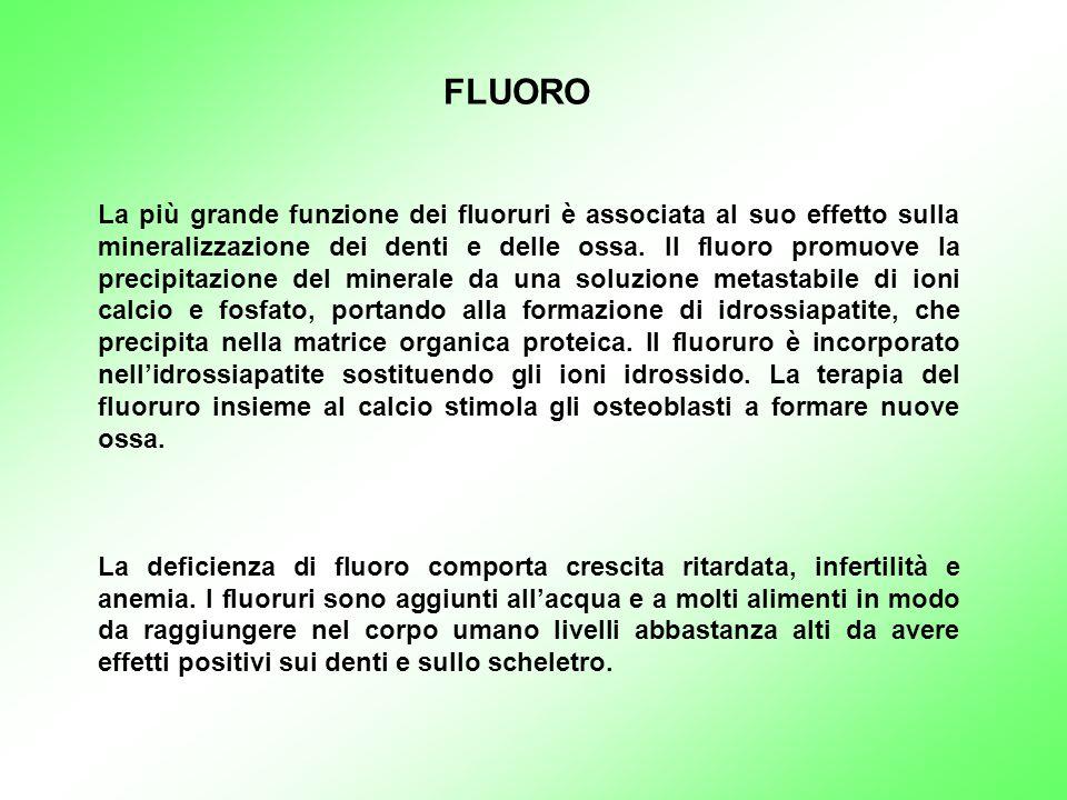 La più grande funzione dei fluoruri è associata al suo effetto sulla mineralizzazione dei denti e delle ossa. Il fluoro promuove la precipitazione del