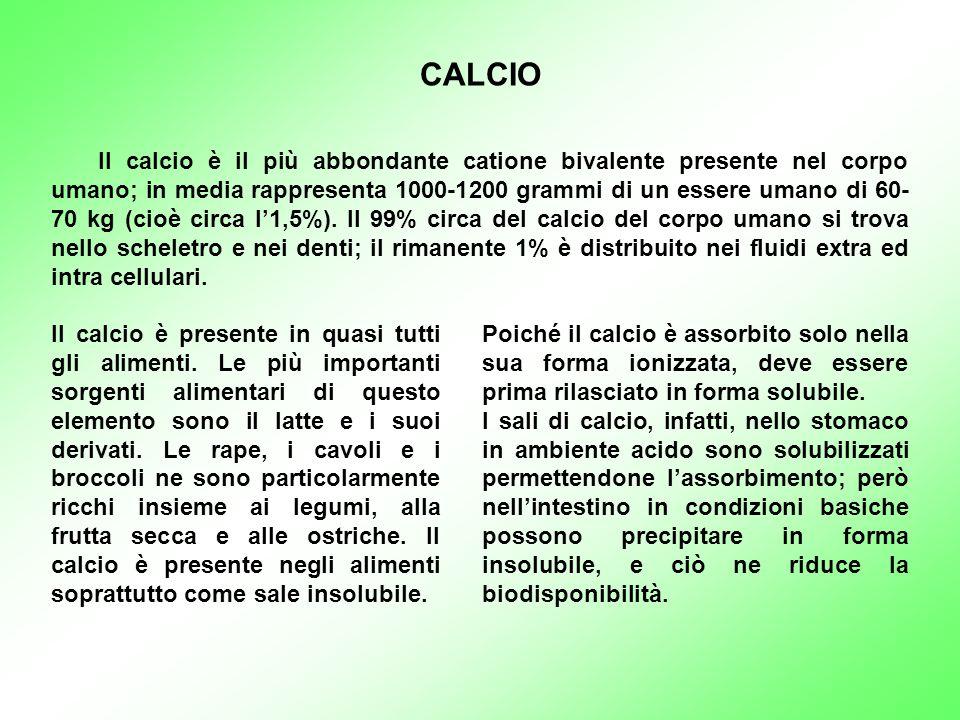CALCIO Il calcio è il più abbondante catione bivalente presente nel corpo umano; in media rappresenta 1000-1200 grammi di un essere umano di 60- 70 kg