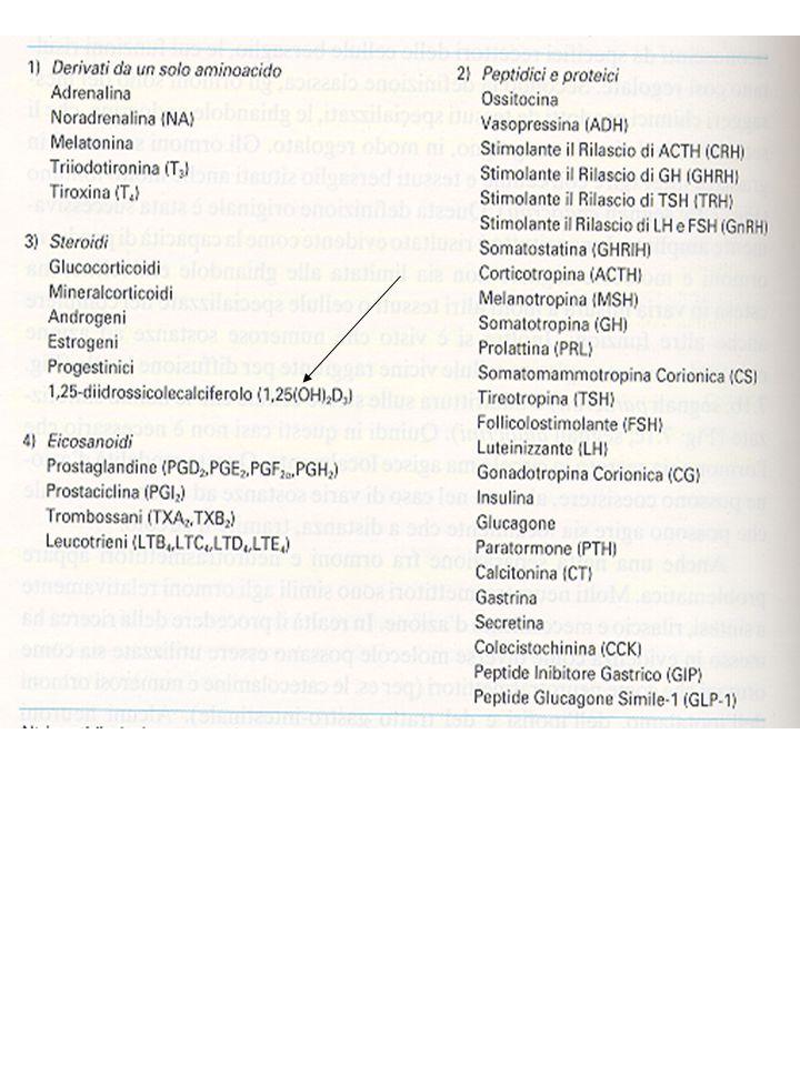 Al gruppo degli ormoni peptidici appartengono i fattori di crescita GF e le citochine