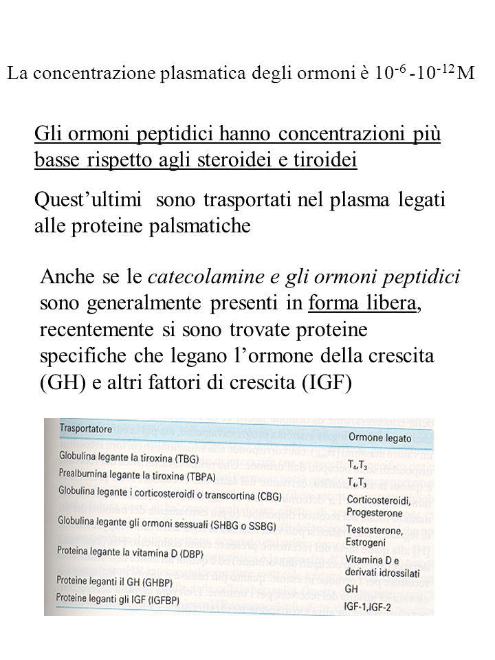 I recettori di membrana sono suddivisibili in tre classi: Vi sono pure dei recettori che non interagiscono con proteine G e non possiedono di per sé attività enzimatica, ma si pensa possano associarsi a enzimi citoplasmatici attivandoli