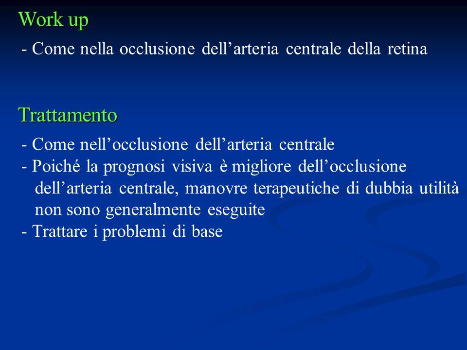 Work up - Come nella occlusione dell'arteria centrale della retina Trattamento - Come nell'occlusione dell'arteria centrale - Poiché la prognosi visiv