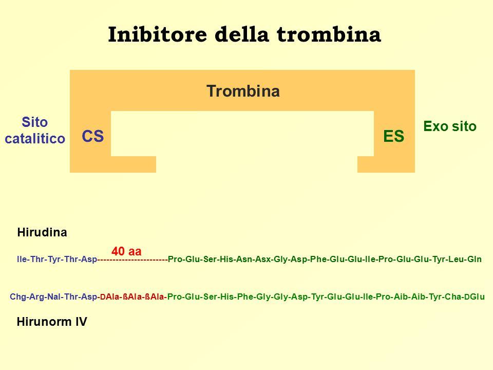 Inibitore della trombina Sito catalitico Trombina CSES Exo sito Ile-Thr-Tyr-Thr-Asp-----------------------Pro-Glu-Ser-His-Asn-Asx-Gly-Asp-Phe-Glu-Glu-Ile-Pro-Glu-Glu-Tyr-Leu-Gln Hirudina Chg-Arg-Nal-Thr-Asp- D Ala-ßAla-ßAla-Pro-Glu-Ser-His-Phe-Gly-Gly-Asp-Tyr-Glu-Glu-Ile-Pro-Aib-Aib-Tyr-Cha- D Glu Hirunorm IV 40 aa