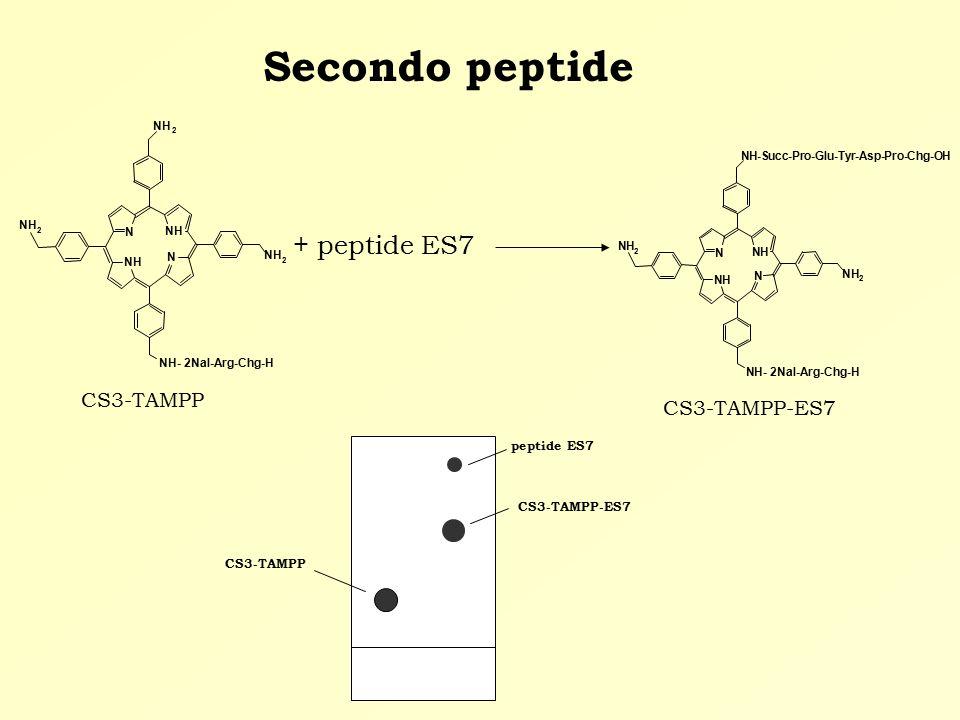 Secondo peptide + peptide ES7 CS3-TAMPP CS3-TAMPP-ES7 CS3-TAMPP CS3-TAMPP-ES7 peptide ES7