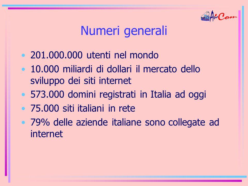 Numeri generali 201.000.000 utenti nel mondo 10.000 miliardi di dollari il mercato dello sviluppo dei siti internet 573.000 domini registrati in Italia ad oggi 75.000 siti italiani in rete 79% delle aziende italiane sono collegate ad internet