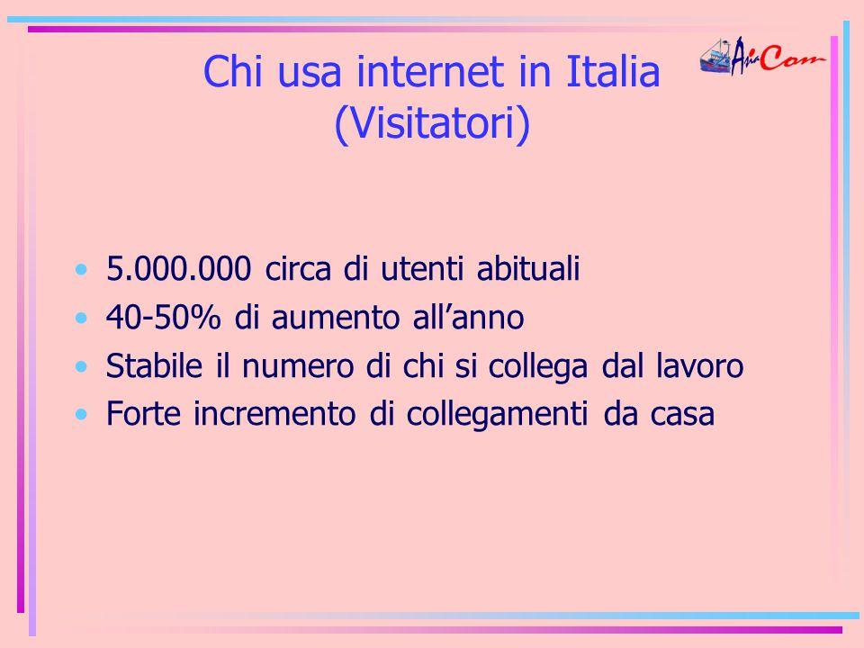 Chi usa internet in Italia (Visitatori) 5.000.000 circa di utenti abituali 40-50% di aumento all'anno Stabile il numero di chi si collega dal lavoro Forte incremento di collegamenti da casa