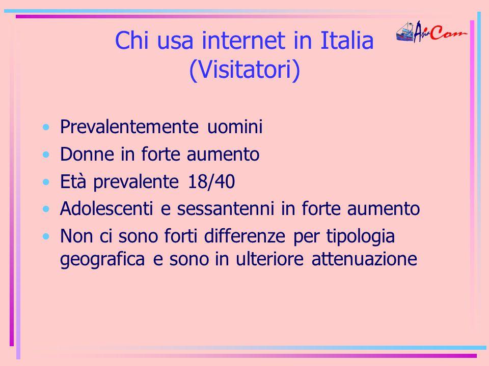 Chi usa internet in Italia (Visitatori) Prevalentemente uomini Donne in forte aumento Età prevalente 18/40 Adolescenti e sessantenni in forte aumento Non ci sono forti differenze per tipologia geografica e sono in ulteriore attenuazione