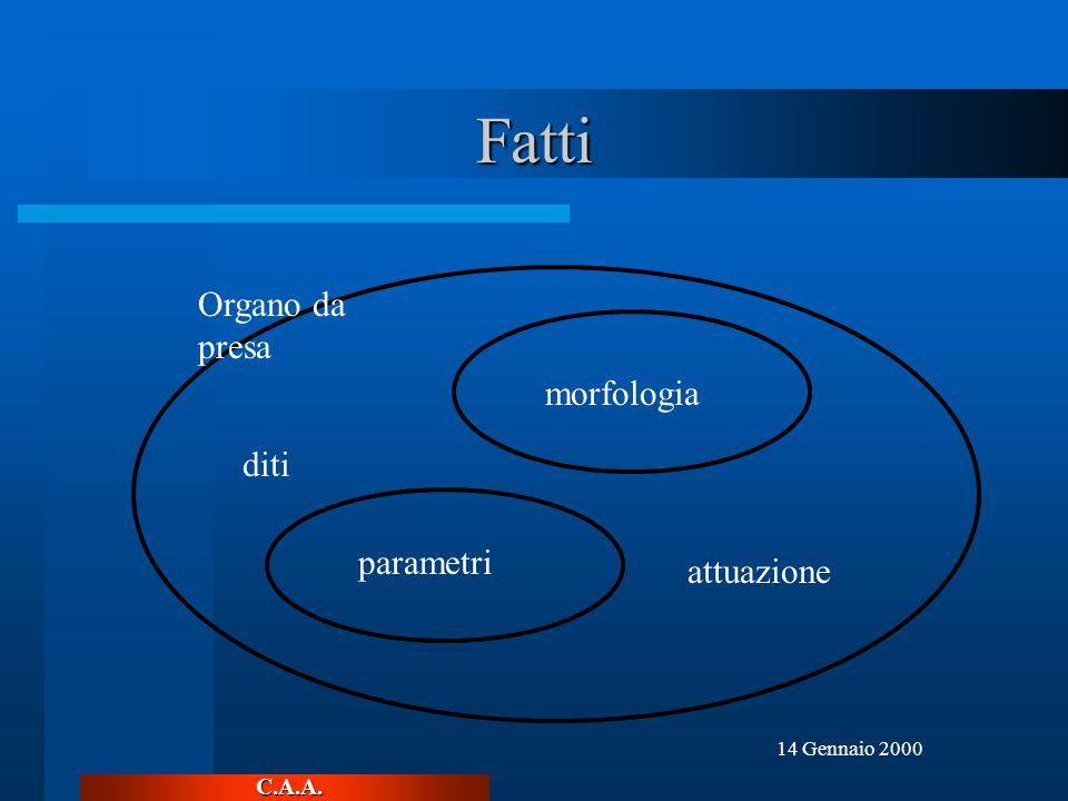 C.A.A. 14 Gennaio 2000 Fatti morfologia parametri diti attuazione Organo da presa