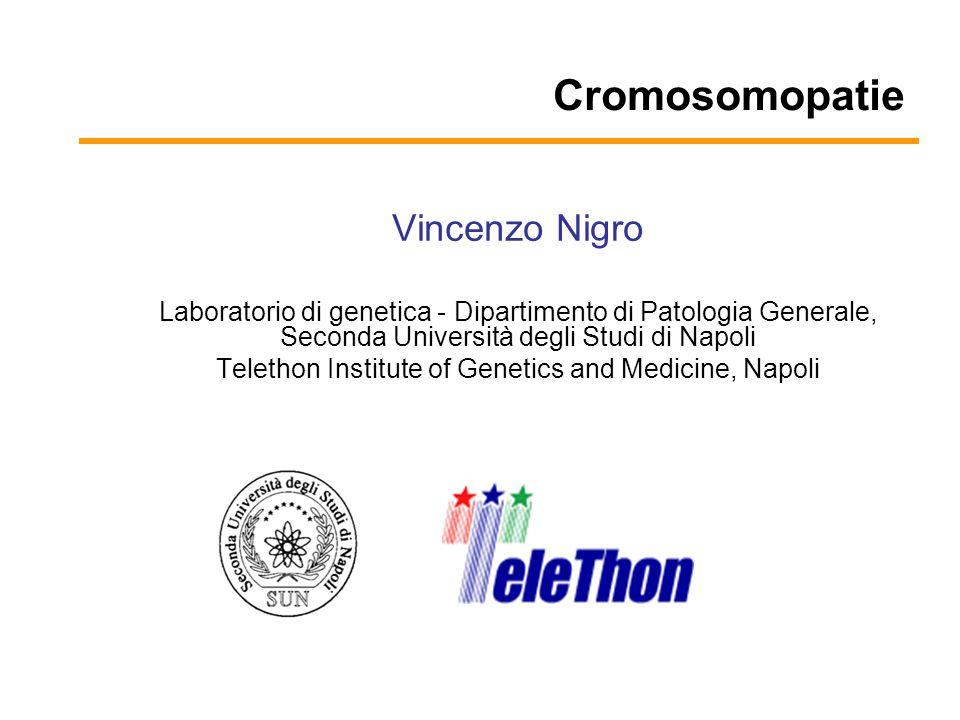 Cromosomopatie Vincenzo Nigro Laboratorio di genetica - Dipartimento di Patologia Generale, Seconda Università degli Studi di Napoli Telethon Institut