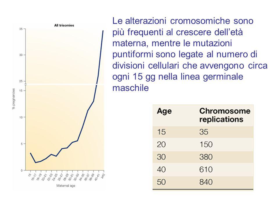 Le alterazioni cromosomiche sono più frequenti al crescere dell'età materna, mentre le mutazioni puntiformi sono legate al numero di divisioni cellula