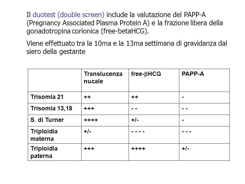 Translucenza nucale free-  HCG PAPP-A Trisomia 21++ - Trisomia 13,18+++- S. di Turner+++++/-- Triploidia materna +/-- - - - - Triploidia paterna ++++