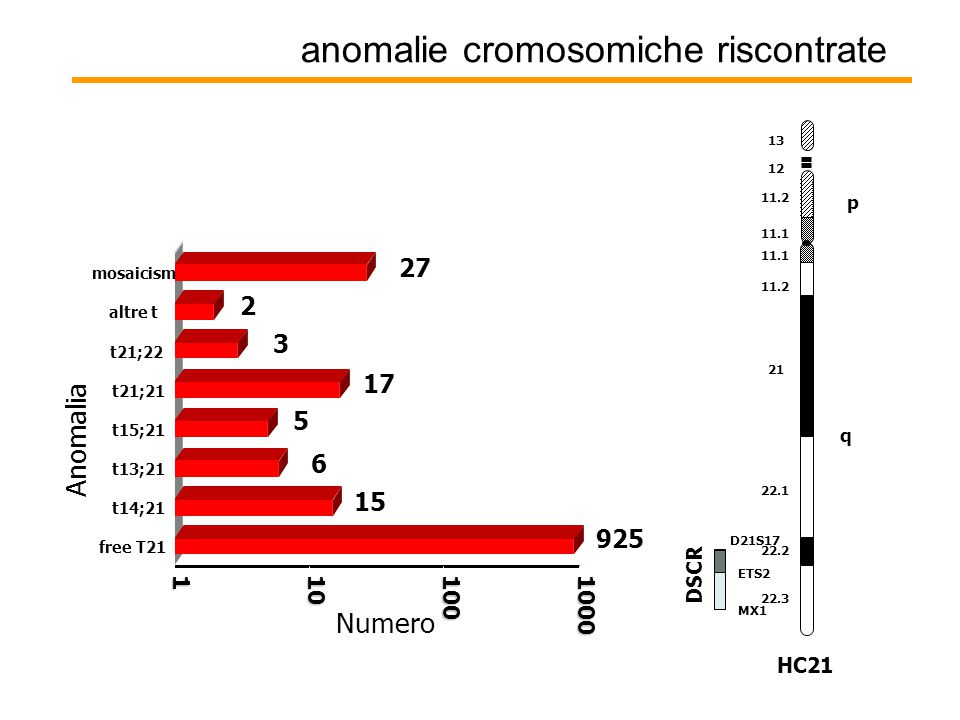 anomalie cromosomiche riscontrate 925 15 6 5 17 3 2 27 1101001000 Numero free T21 t14;21 t13;21 t15;21 t21;21 t21;22 altre t mosaicism Anomalia q p 11