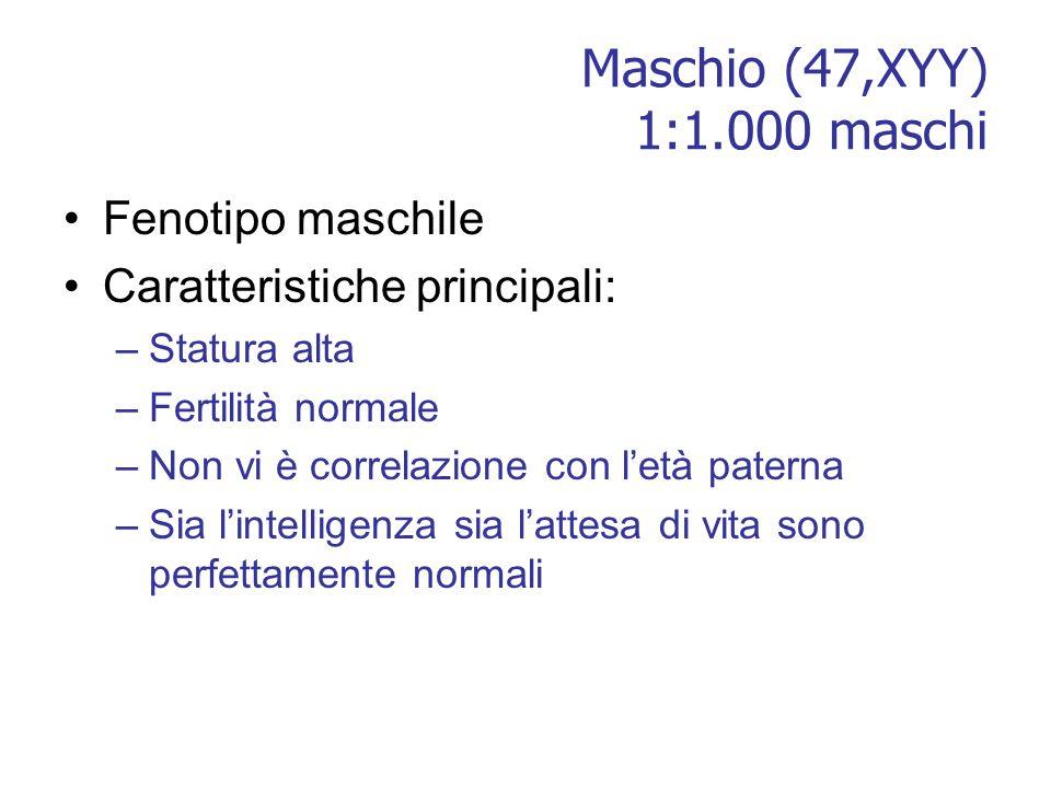 Maschio (47,XYY) 1:1.000 maschi Fenotipo maschile Caratteristiche principali: –Statura alta –Fertilità normale –Non vi è correlazione con l'età patern