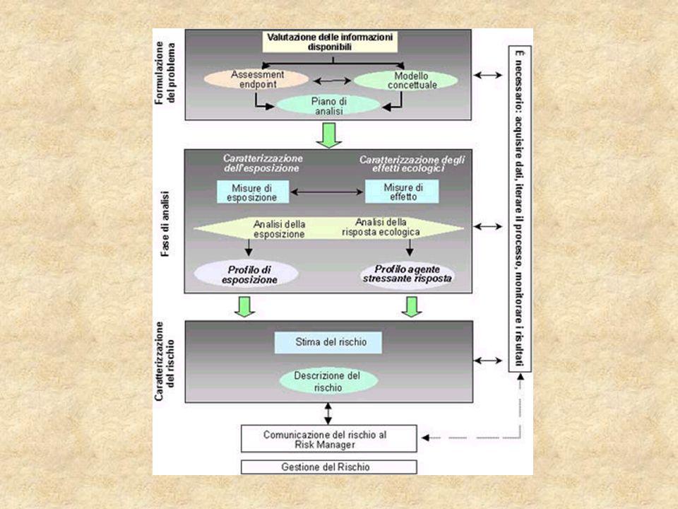 RADAR AMBIENTALE  metodo proposto e pubblicato dal professore Vaccari dell'Università di Pavia  valutazione del rischio comparativo  livelli di priorità di disinquinamento nell'attuazione dei piani di bonifica ambientale  6 parametri  Prevede: matrici per la valutazione di ogni singolo parametro schede operative utilizzabili sul campo dagli operatori tabella di sintesi che unifica tutte le informazioni e valutazioni emerse dall'analisi dei singoli parametri