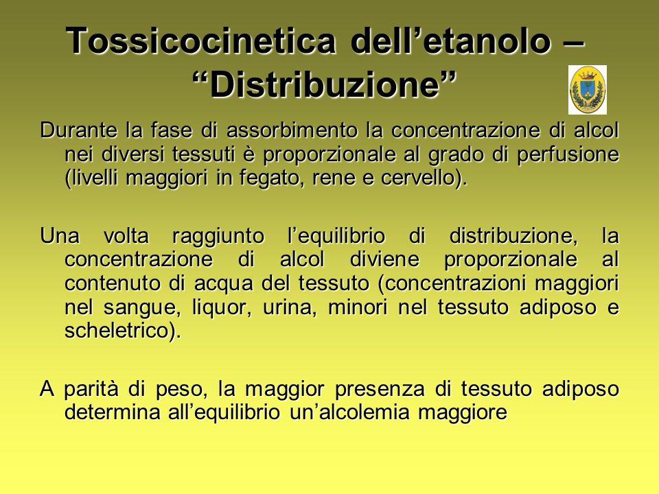 Durante la fase di assorbimento la concentrazione di alcol nei diversi tessuti è proporzionale al grado di perfusione (livelli maggiori in fegato, ren